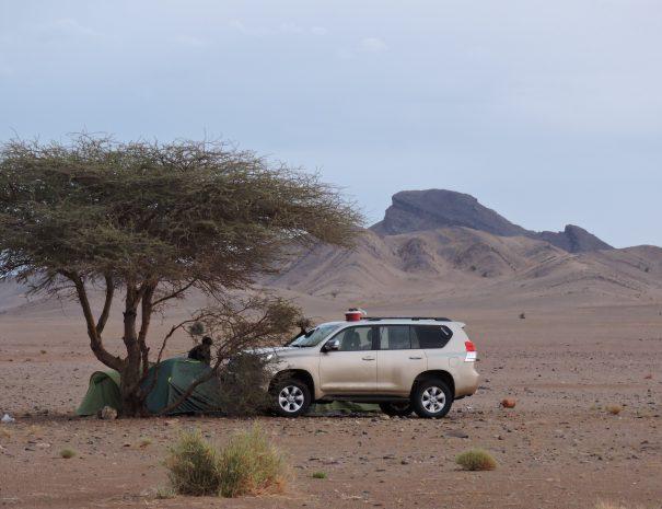 Contact Morocco Sahara Desert Tours