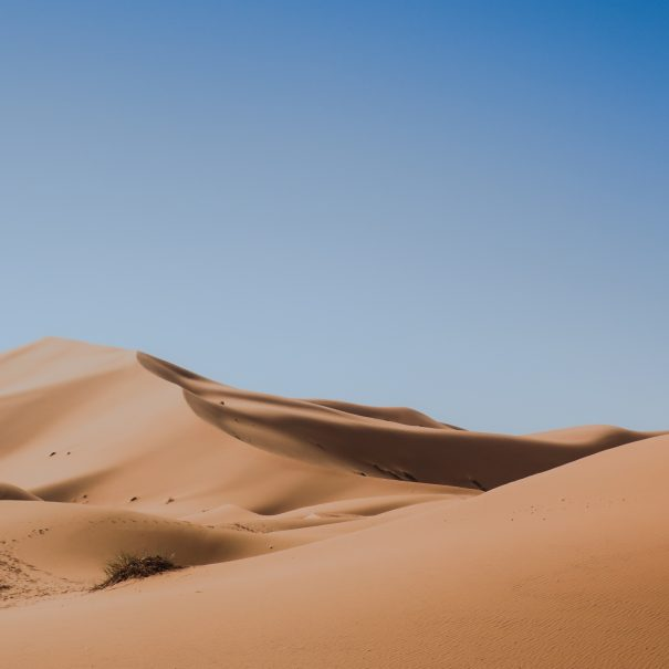 8-day Sahara Desert Tour from Tangier to Marrakech