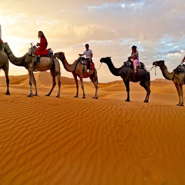Merzouga Camel trek sunset