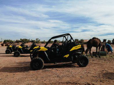 Merzouga Sahara Quad & ATV tours