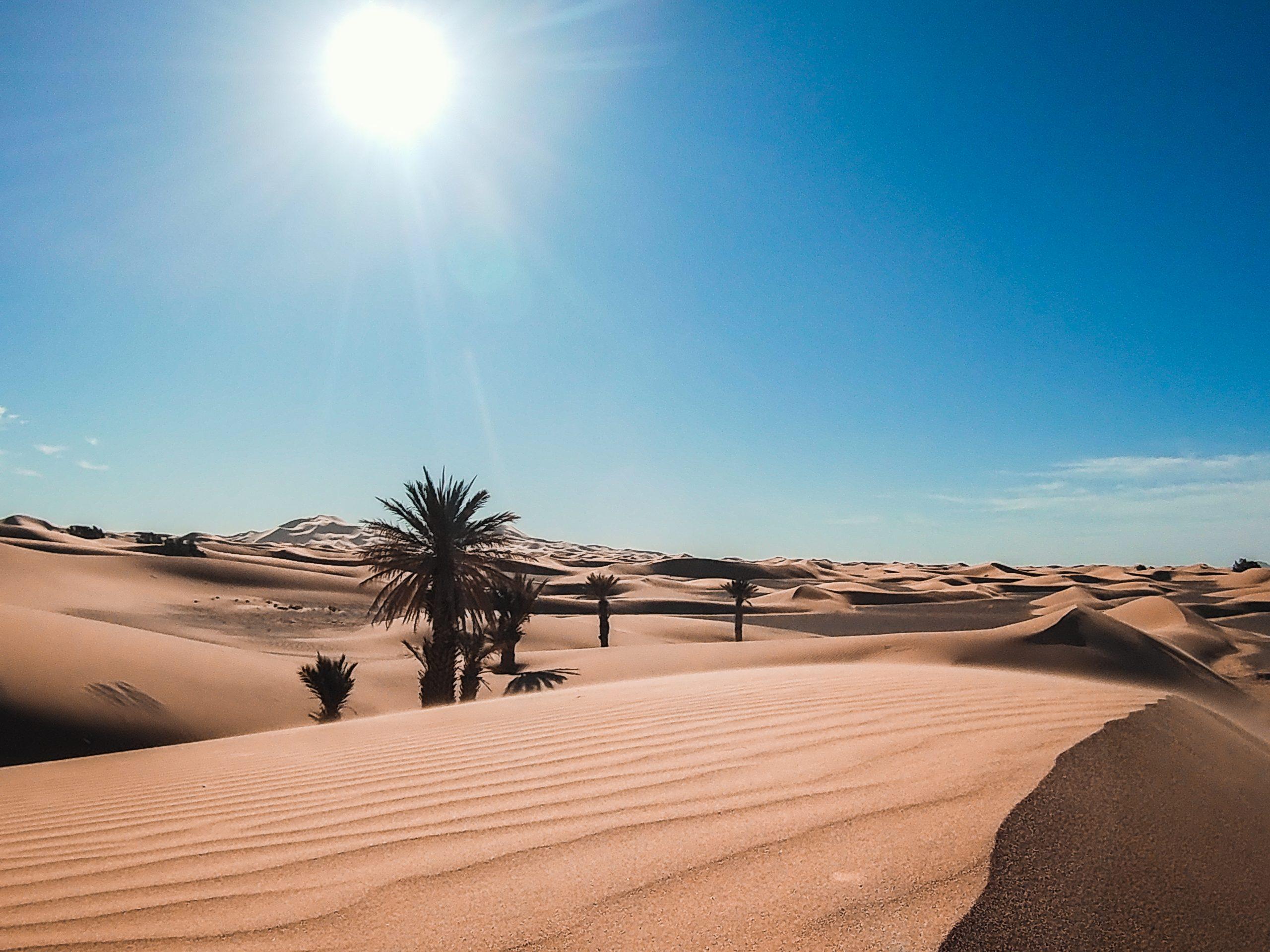 3-day Fez to Marrakech Sahara Desert Tour