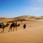 moroccosaharadeserttours.com